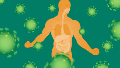 Psoriasis and Inflammation – key players and Curcumin Involvement